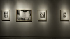 Santos y sombras, installation view, MAC Dallas, 2010